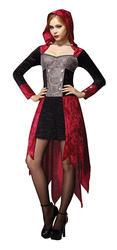 Demon Maiden Costume