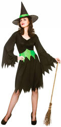 Wicked Witch Ladies Fancy Dress Halloween Scary Adults Womens Costume Outfit New