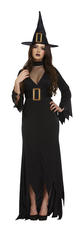 Wicked Witch Ladies Fancy Dress Halloween Fairytale Book Womens Adults Costume