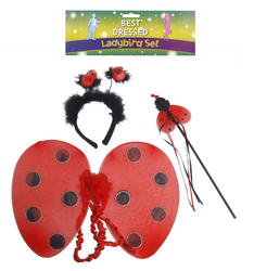 Kid's Ladybird Set