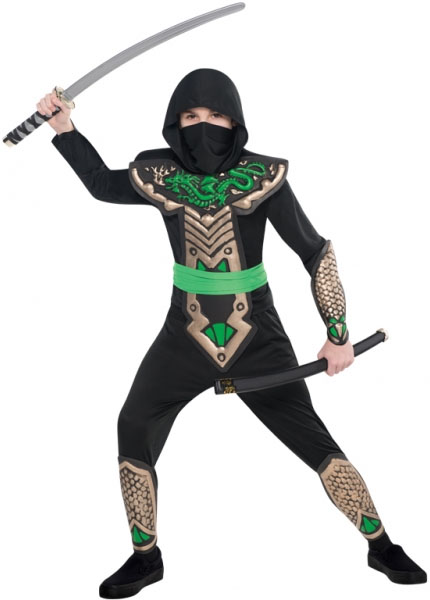 Dragon Ninja Costume  sc 1 st  Mega Fancy Dress & Dragon Ninja Costume | TV Book and Film Costumes | Mega Fancy Dress