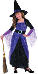 Pretty Potion Witch Costume