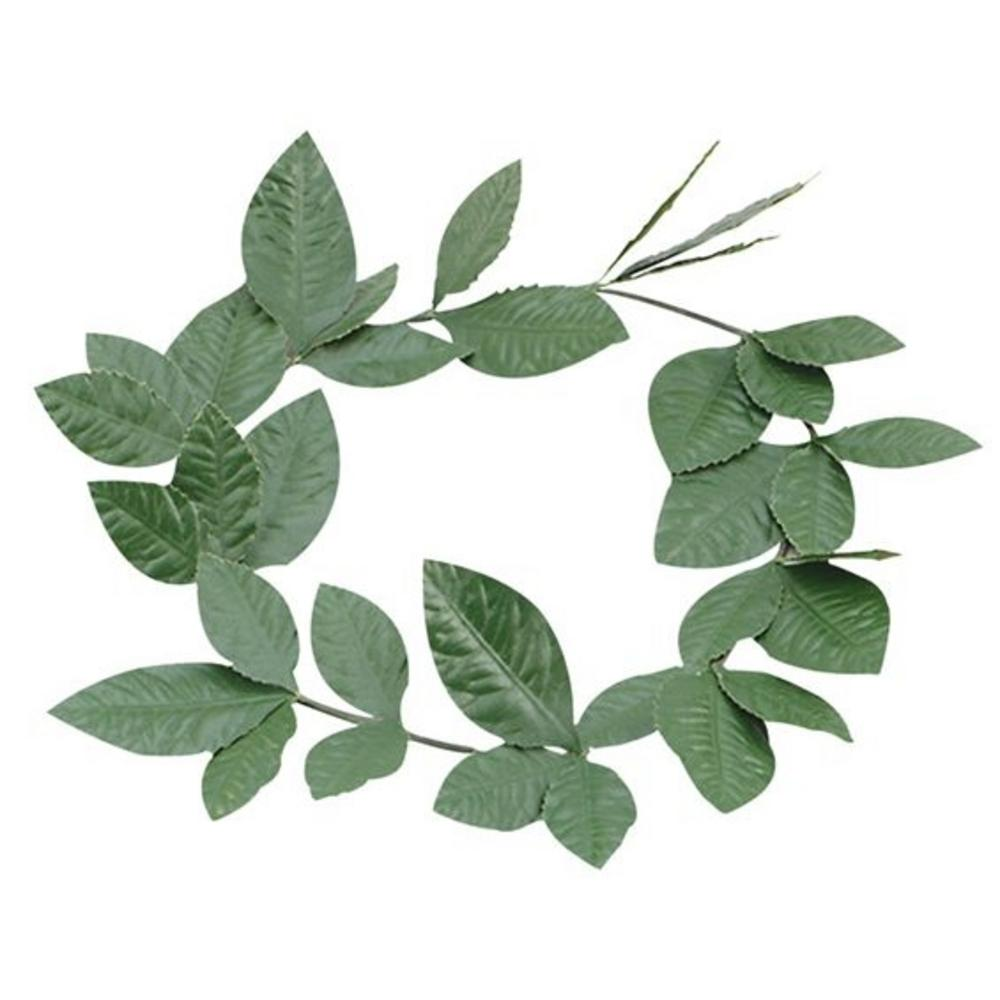 Green Leaf Laurel Adults Fancy Dress Roman Greek Wreath Toga  Costume Accessory
