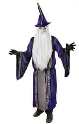 Wizard Fancy Dress