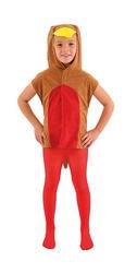 Robin Tabard Costume