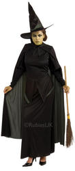 Wicked Witch Wizard of Oz Costume