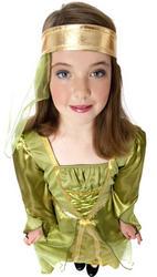Girls Maid Marian Costume