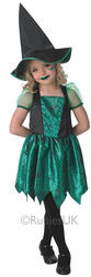 Green Spider Witch Costume