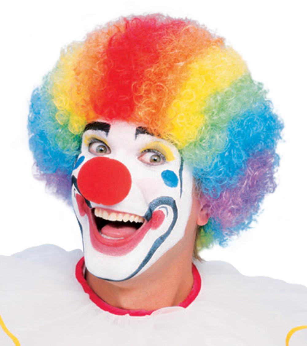 Rainbow Clown Multi Coloured Wig