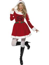 Miss Santa Fancy Dress Costume