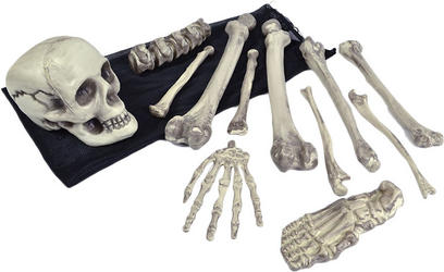 Skeleton Bones in a Bag