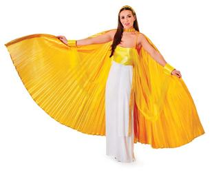 Large Gold Wings Cape Accessory