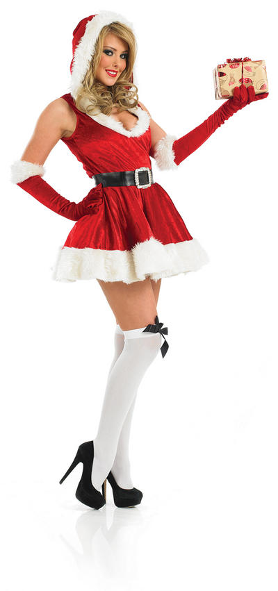 Sexy Santa Ladies Fancy Dress