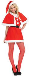Christmas Cutie Costume