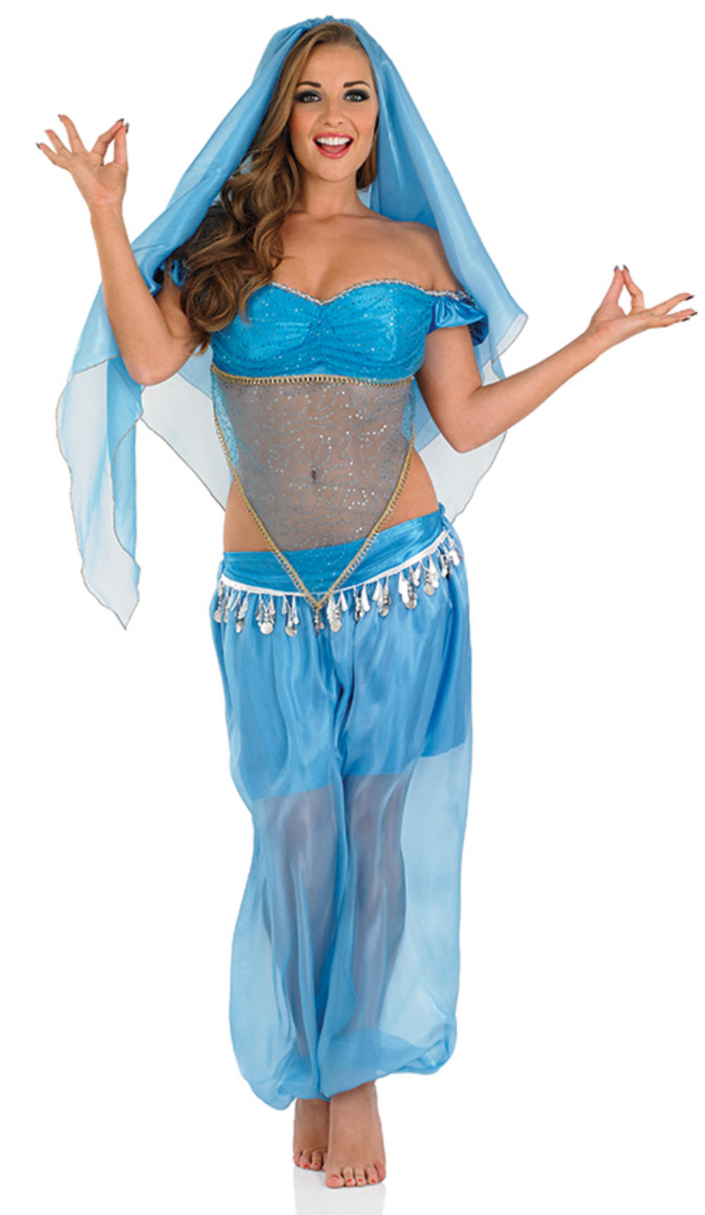Arabian Princess Ladies Costume