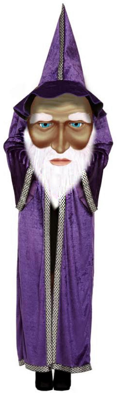 Wizard with Giant Face Boys Costume