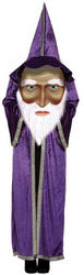 Wizard with Giant Face Mens Costume