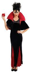 Queen of Evil Ladies Costume