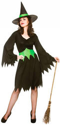 Wicked Witch Ladies Fancy Dress