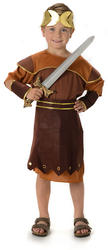 Roman Warrior Boys Fancy Dress