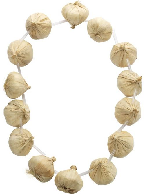 French Garlic Garland Neckace Fancy Dress Accessory
