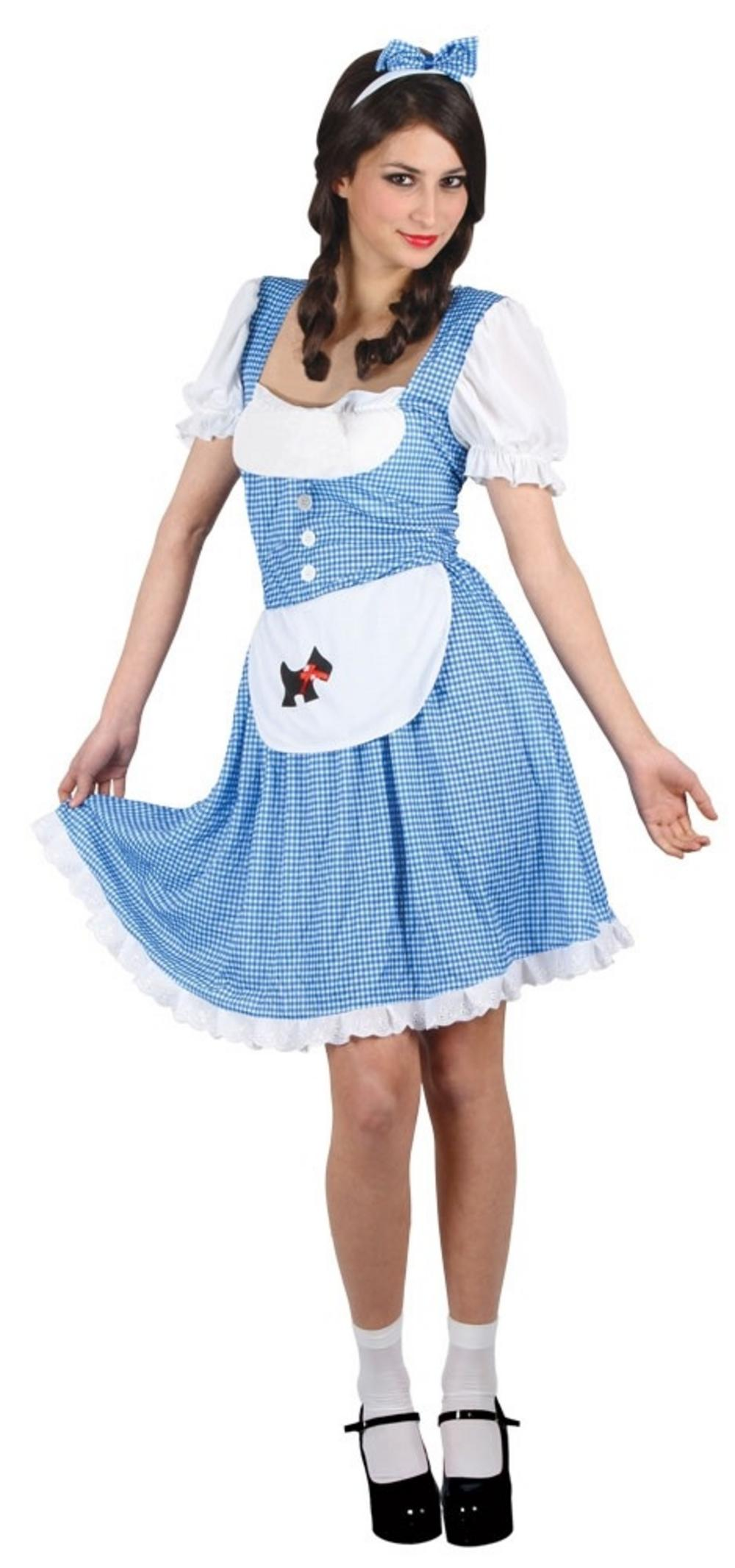 Darling Dorothy Costume  sc 1 st  Mega Fancy Dress & Darling Dorothy Costume | All Ladies Costumes | Mega Fancy Dress