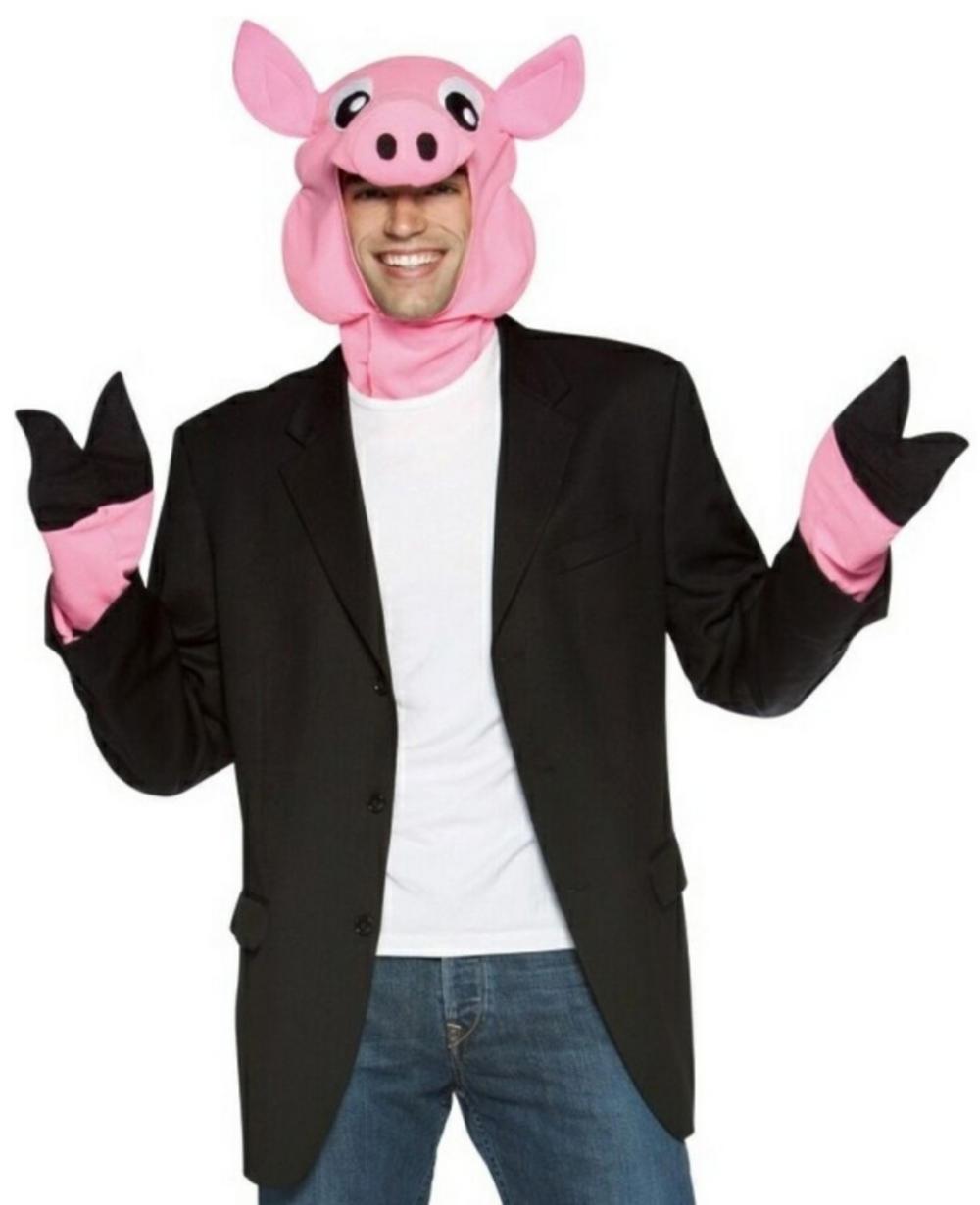 Animal Pig Costume Kit