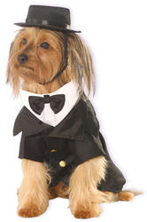 Dapper Pet Dog Costume