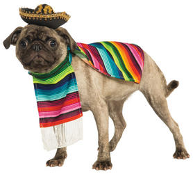 Mexican Serape Pet Dog Costume