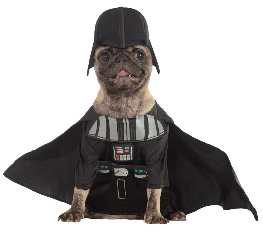 Dog Halloween Costumes Uk