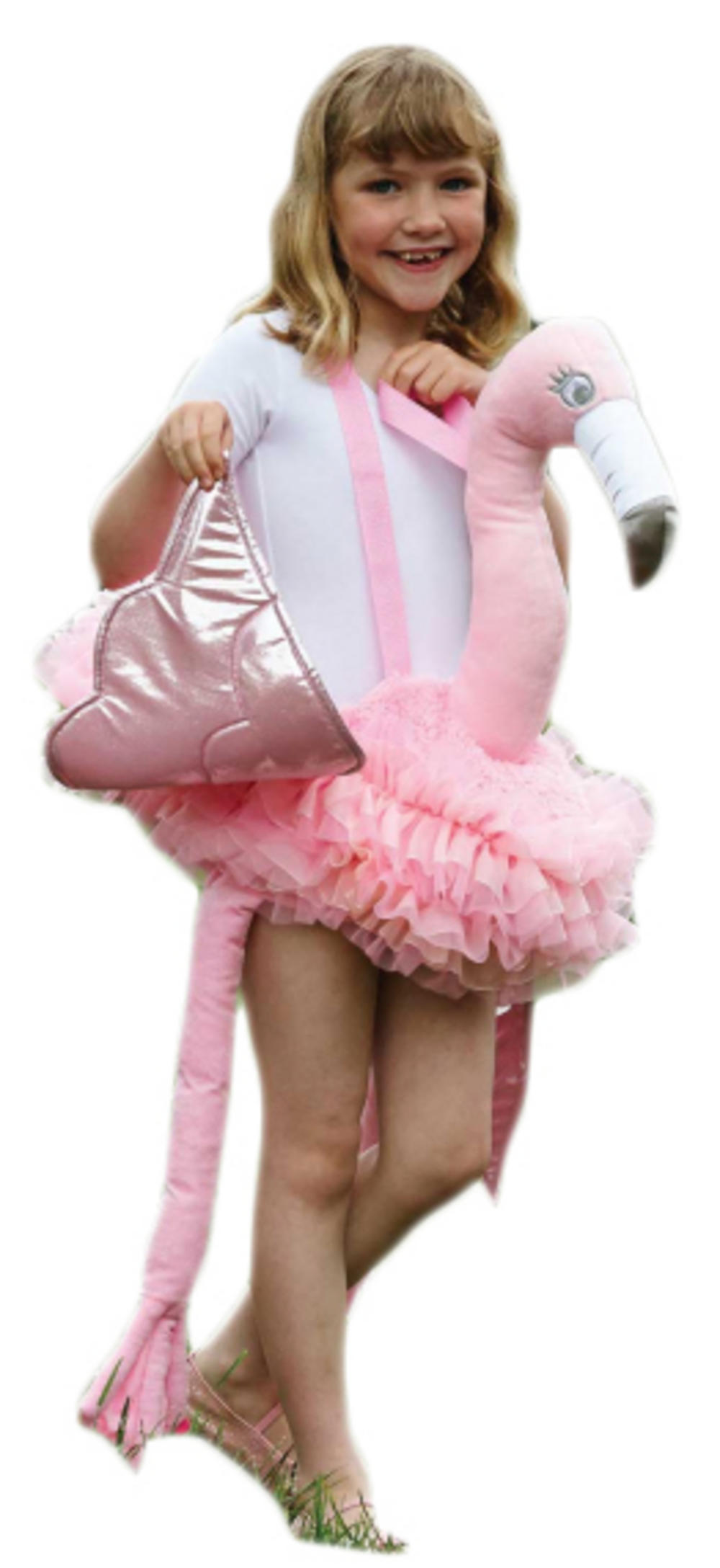 Ride on Flamingo Kids Costume  sc 1 st  Mega Fancy Dress & Ride on Flamingo Kids Costume | TV Book and Film Costumes | Mega ...