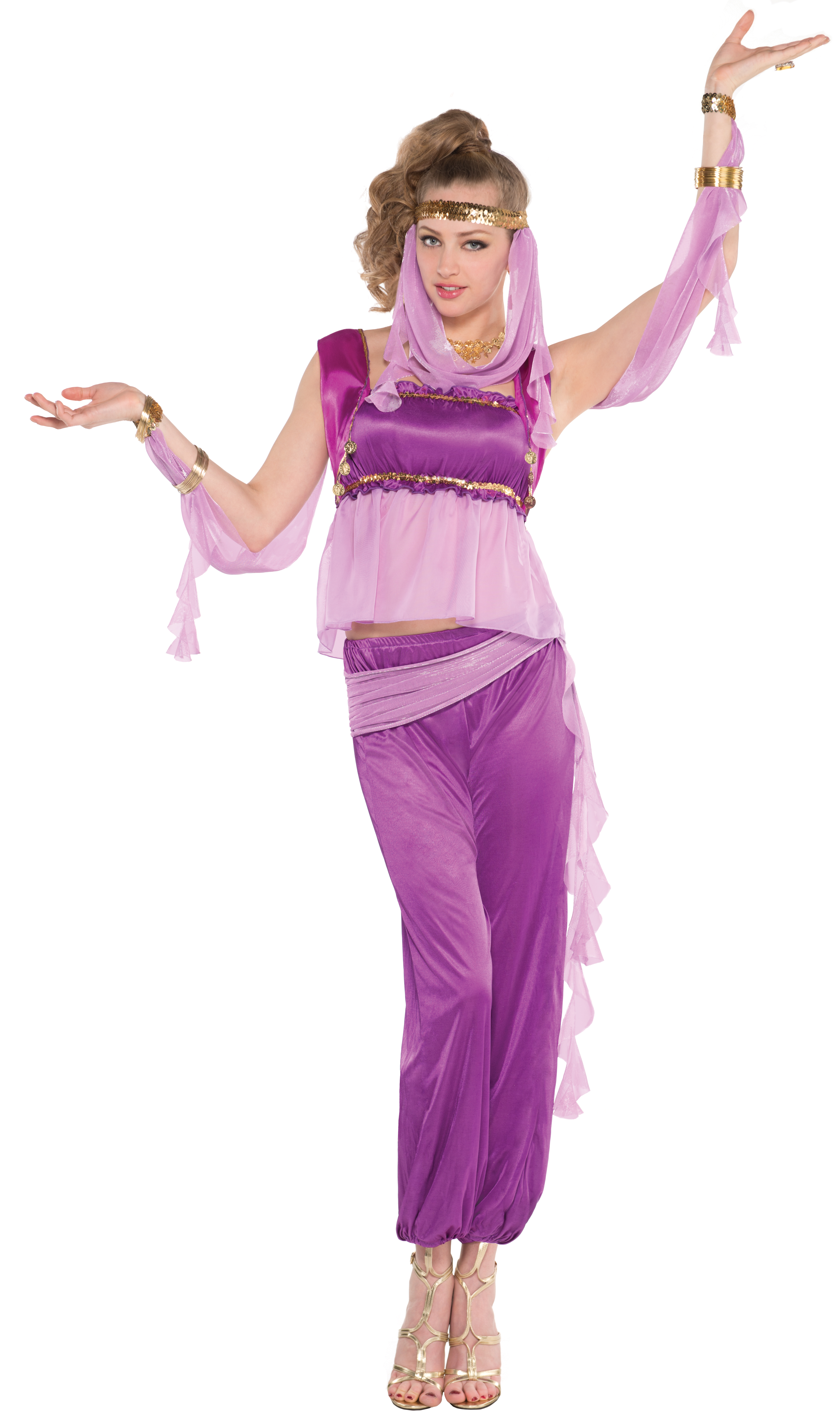 Desert Princess Ladies National Fancy Dress Arabian Nights Womens ...