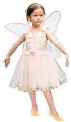 Vintage Fairy Girls Costume