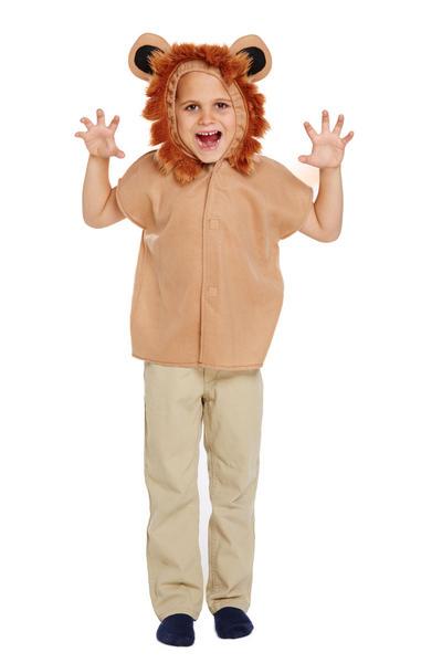 Lion Kid's Costume