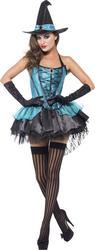 Fever Witch Devine Ladies Costume
