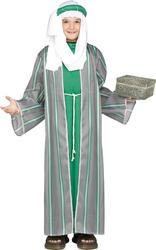 Green Wise Man Boy's Costume