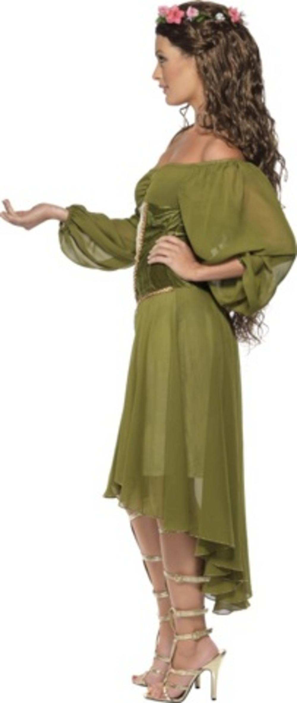 Fair Maiden Costume All Ladies Costumes Mega Fancy Dress
