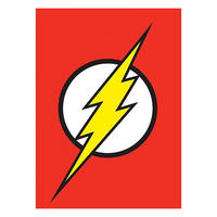 Flash Logo Fridge Magnet Thumbnail 1