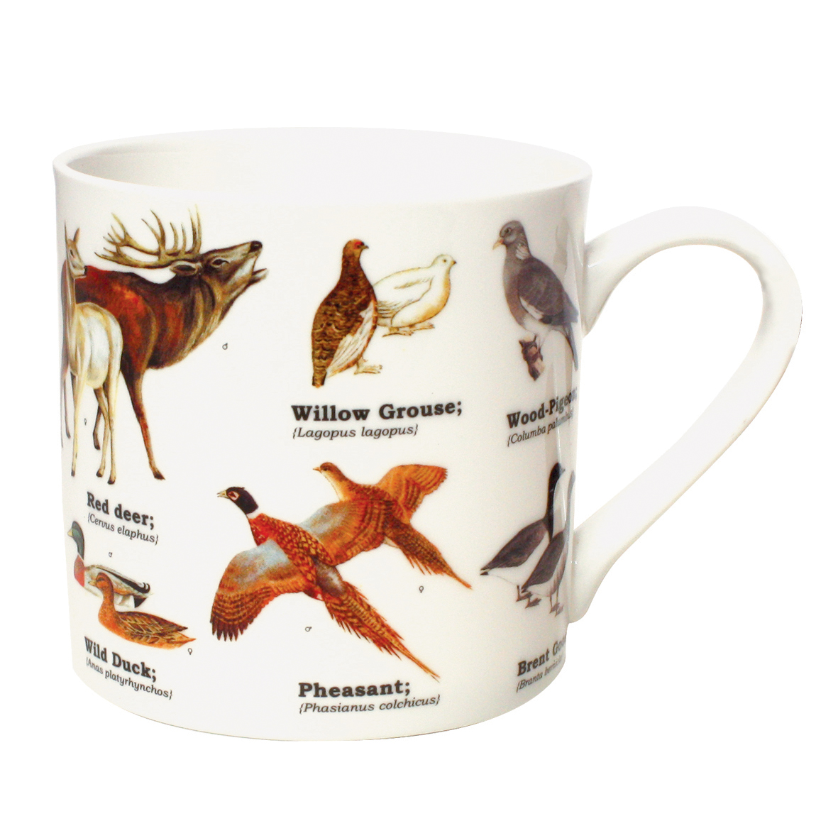 Ecologies Wild Animals Fine Bone China Mug