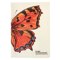 Ecologies A5 Butterfies Journal/Notebook Thumbnail 1