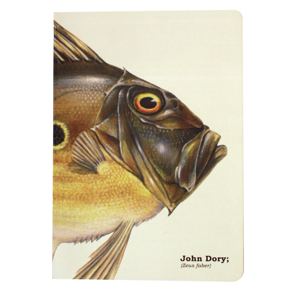 Ecologies A5 John Dory Fish Journal/Notebook