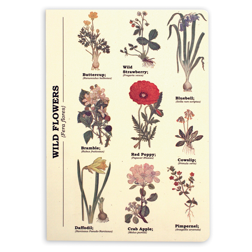 Ecologies A5 Wild Flowers Journal/Notebook