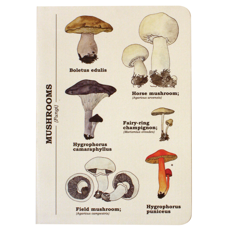 Ecologies A6 Mushrooms Journal/Notebook