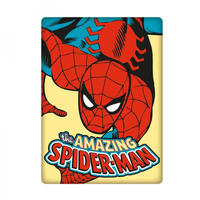 Spider-Man Rectangular Magnet