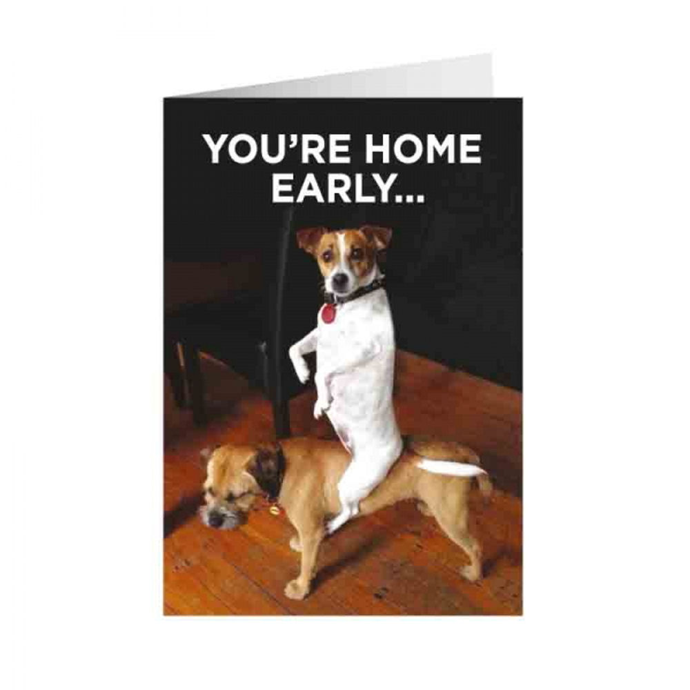 Youre Home Early Greeting Card Gift Blank Birthday Dog Humour Puppy