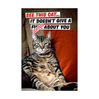 See This Cat.. It Doesn't Give a F*** About You Fridge Magnet