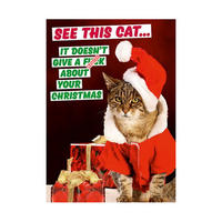 See This Cat.. It Doesn't Give a F*** About Your Christmas Greeting Card