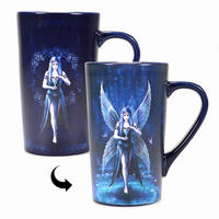 Anne Stokes Enchantment Fairy Heat Change Latte Mug Thumbnail 1