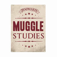 Harry Potter Muggle Studies A5 Steel Sign Thumbnail 1