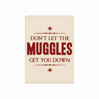 Harry Potter Don't Let The Muggles Get You Down Fridge Magnet